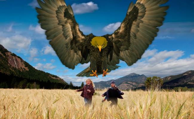 giant-raptor