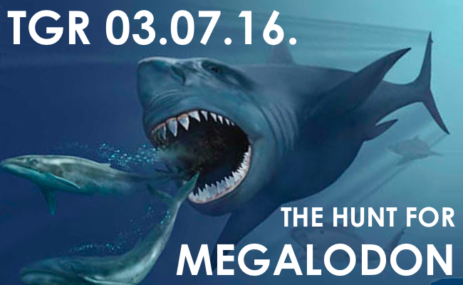 megalodon-650